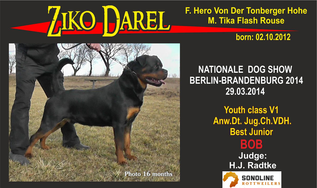 Ziko National German Dog Show